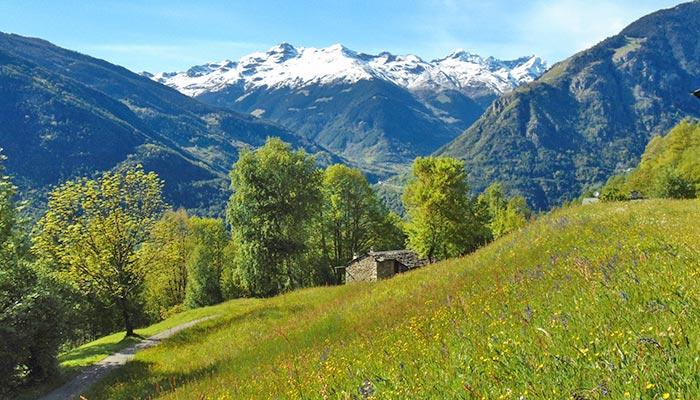 Grosotto im Valtellina